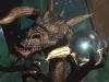 dragon29