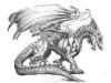 dragon34